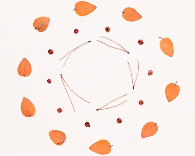 紅葉とサークルの植物のコレクションのトップビュー