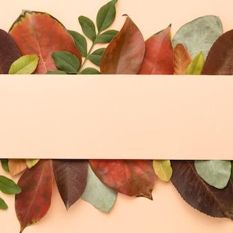 Вид сверху красочные осенние листья