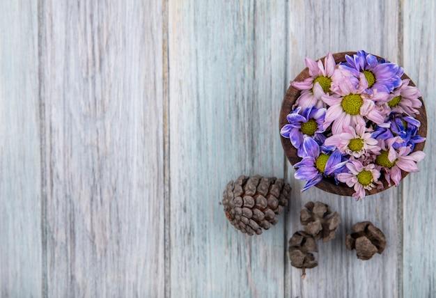 Вид сверху красочных прекрасных цветов ромашки на деревянной миске с сосновыми шишками на сером деревянном фоне с копией пространства