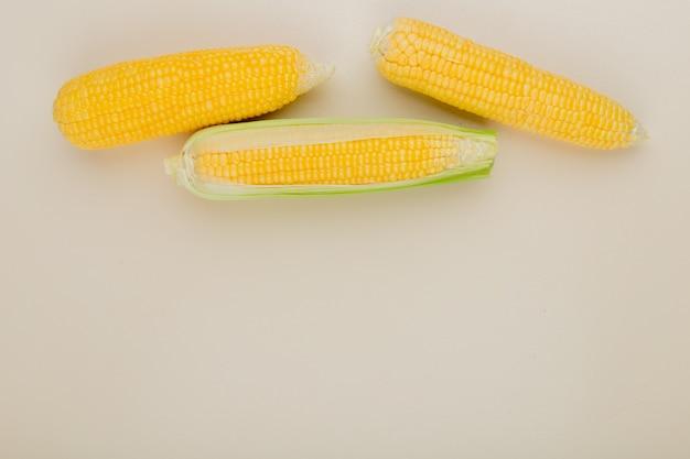 Вид сверху початков кукурузы на белом с копией пространства