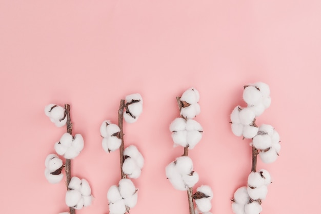 분홍색 벽에 고립 된 분기에 목화 꽃의 상위 뷰