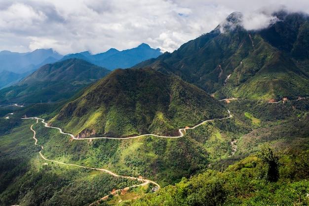 緑の森と山を通る田舎道の上面図