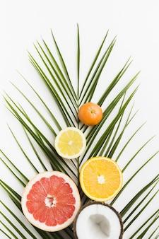 Вид сверху вкусных фруктов и листьев
