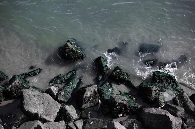 海岸のさまざまな石の上面図。