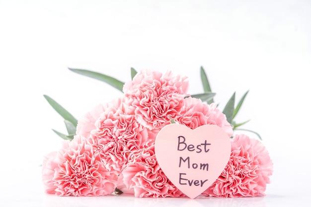 우아한 개화 달콤한 핑크 색상 부드러운 카네이션 카드와 밝은 흰색 배경에 고립의 상위 뷰, 5 월 어머니의 날 엄마 인사말 디자인 개념, 가까이, 복사 공간
