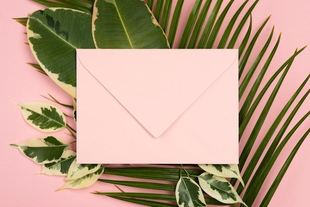 Вид сверху конверта с листьями растений