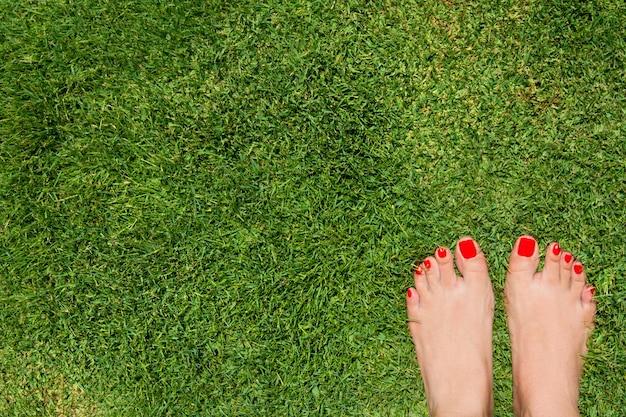Вид сверху женских ног на траве с красными пальцами ног