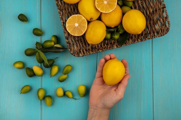 青い木製の壁の枝編み細工品トレイにキンカンやレモンなどの果物とレモンを持っている女性の手の上面図