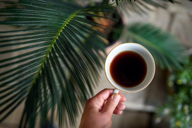 Вид сверху женской руки, держащей чашку кофе, на зеленом фоне с комнатными растениями.