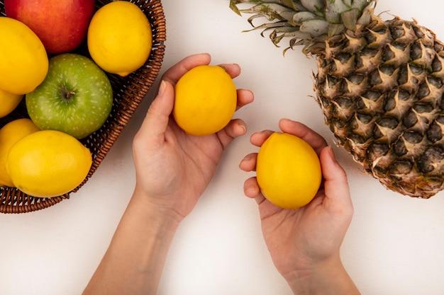 リンゴバナナと白い壁に分離されたパイナップルとレモンのバケツと新鮮なレモンを持っている女性の手の上面図