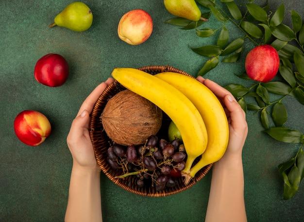 Вид сверху женских рук, держащих корзину с фруктами, как кокос, банан, виноград, груша с персиками и листьями на зеленом фоне