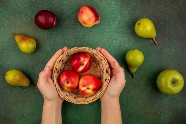 Вид сверху на женские руки, держащие корзину персиков с яблоками и грушами на зеленом фоне
