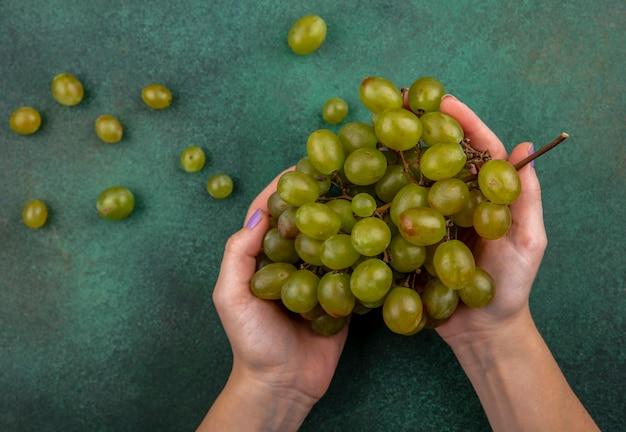 Вид сверху женских рук, держащих гроздь белого винограда с виноградными ягодами на зеленом фоне