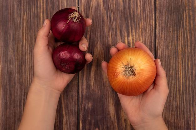 木製の表面に新鮮な赤と黄色の玉ねぎを保持している女性の手の上面図