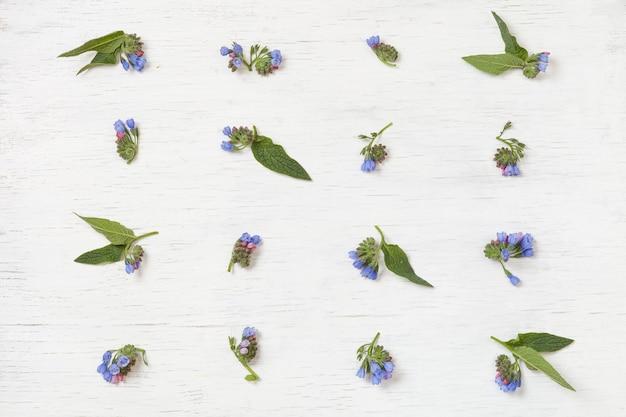 白い木製の背景に青い花のフラットレイの上面図
