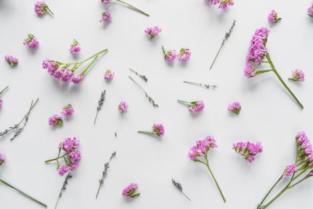 Вид сверху на цветы и лепестки