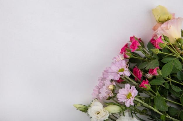 Вид сверху цветов на белом фоне с копией пространства