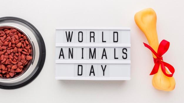 Вид сверху на миску с косточкой и световым коробом на день животных