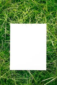 緑の庭の草と白い背景の上のコピースペースで作られたフレームの上面図。紙カードと緑の葉。自然な概念。