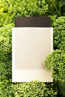 緑のセジウムの花で作られたフレームの上面図と販売のためのパッケージまたはタグのコピースペース緑の葉...