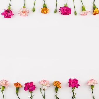 신선한 꽃의 상위 뷰