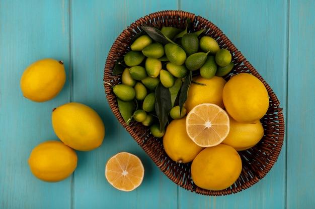 青い木製の壁に隔離されたレモンとバケツの上のレモンやキンカンなどの新鮮な果物の上面図