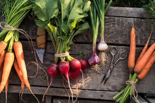 Вид сверху свежих овощей на деревянном фоне