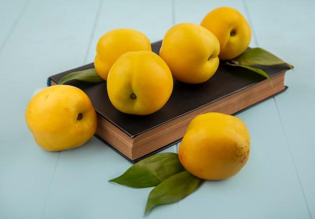 Вид сверху свежих желтых персиков, изолированных на синем фоне