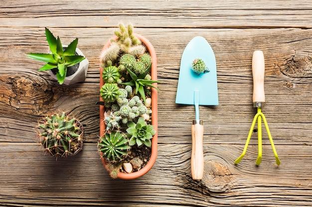 Вид сверху садовых инструментов на деревянном полу