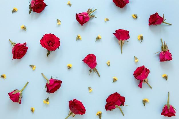 화려한 꽃 구색의 상위 뷰