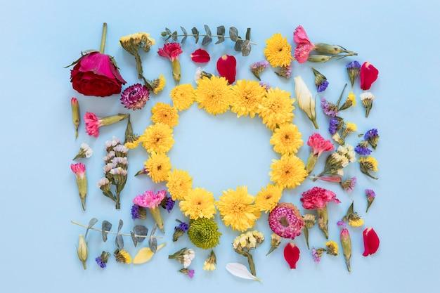 Вид сверху великолепного ассортимента цветов