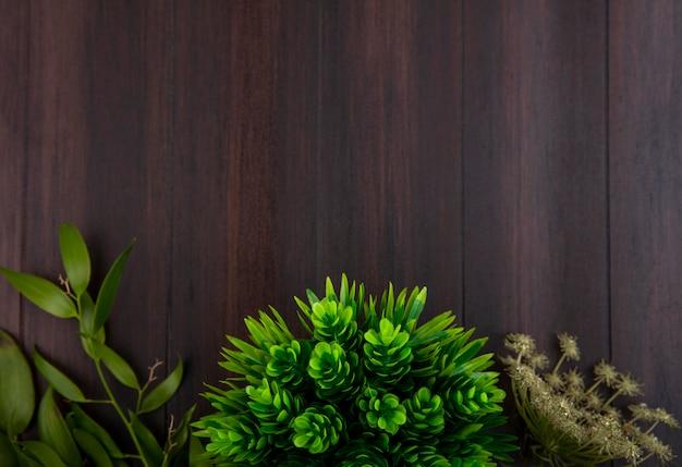 緑と異なる葉が黒い表面上に分離されてのトップビュー