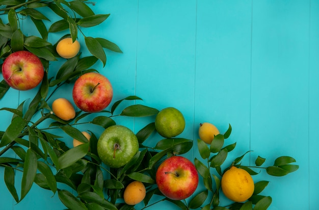 水色の表面に葉レモンとアプリコットと緑と赤のリンゴのトップビュー