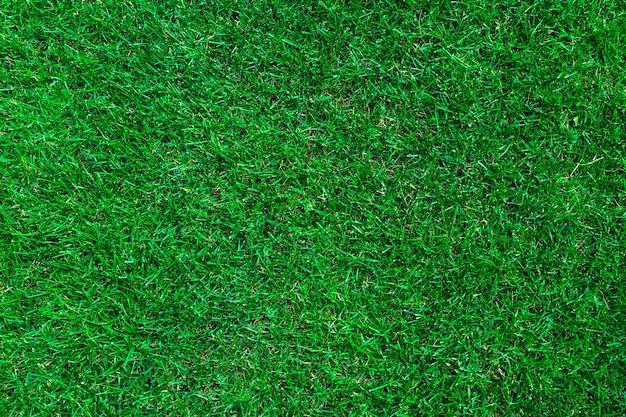 緑の草の上面図。テクスチャード芝生の背景