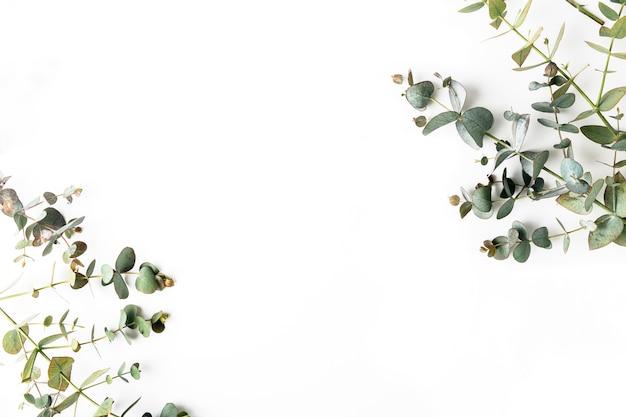 緑の葉の上から見る