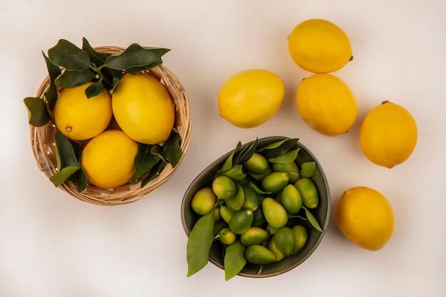白い背景の上のバケツにレモンとボウルの上の緑の皮のキンカンの上面図