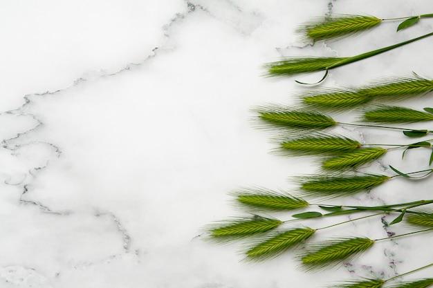 コピースペースを持つ大理石のテーブルに緑の小穂の平面図です。