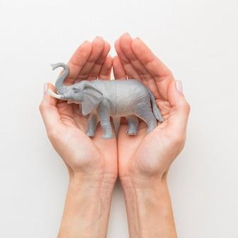 Вид сверху на руки, держащие фигурку слона на день животных