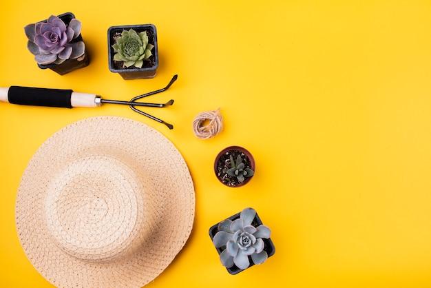 Вид сверху шляпы и садовой вилки