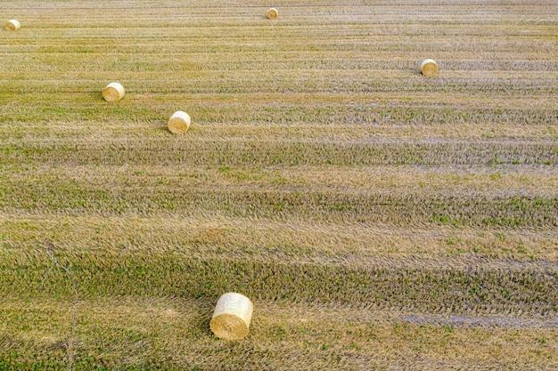 Вид сверху на тюки сена, сельскохозяйственное поле после сбора урожая с рулонами сена