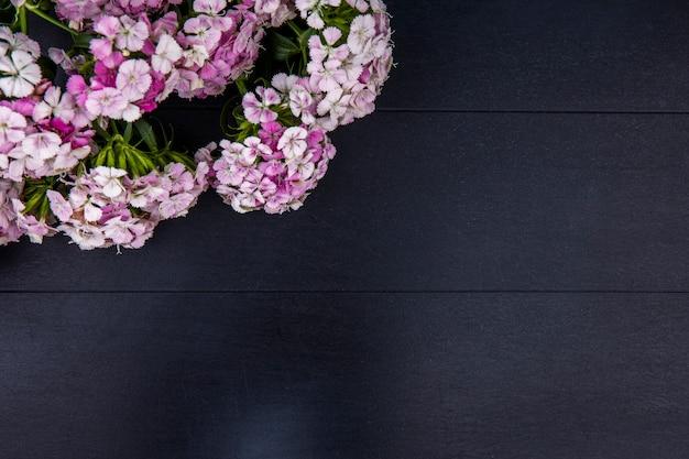 검은 색 표면에 밝은 분홍색 꽃의 상위 뷰