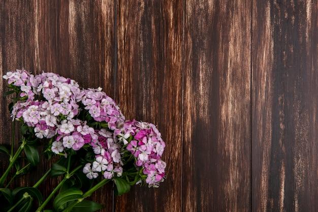 나무 표면에 밝은 분홍색 꽃의 상위 뷰
