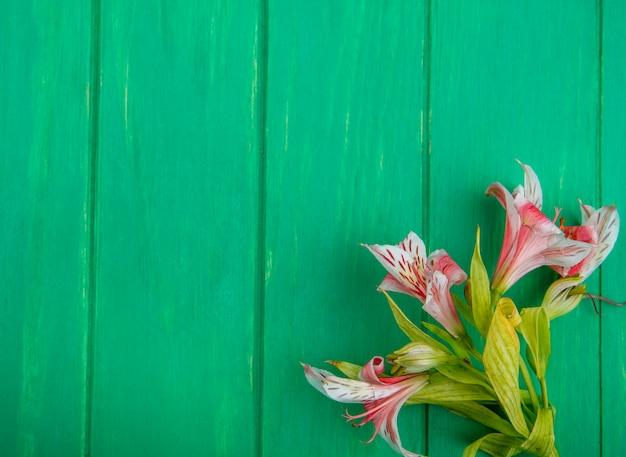녹색 표면에 밝은 분홍색 백합의 상위 뷰