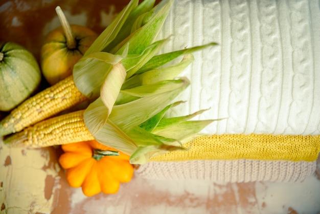 ニットセーターの横にあるトウモロコシとカボチャの上面図