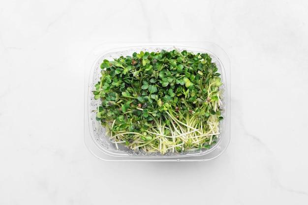 Microgreens 그릇의 상위 뷰