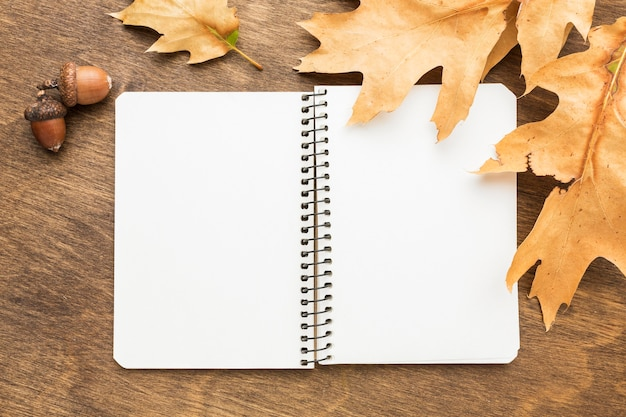 秋の紅葉とドングリのノートのトップビュー