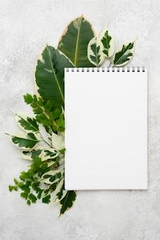 다른 식물 잎을 가진 노트북의 상위 뷰