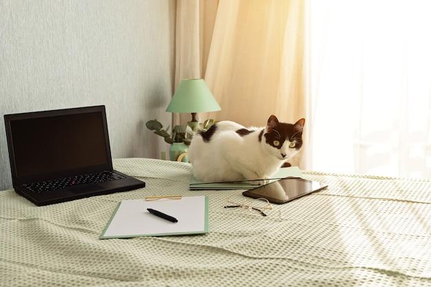 Вид сверху на канцелярские товары в постели, неформальную рабочую среду с ноутбуком, блокнотом, чашкой чая. удаленная работа, домашний офис, фрилансер, концепция самоизоляции