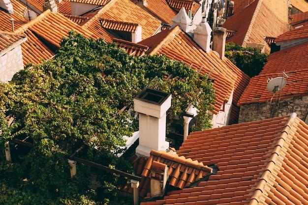 Вид сверху на старые оранжевые крыши домов с антеннами дымоходов и взбирающиеся зеленые лозы винограда
