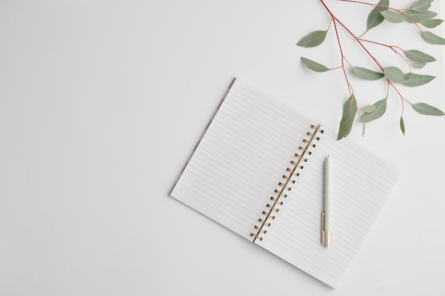 Вид сверху открытой записной книжки с пустыми страницами и ручкой с веткой растения с зелеными листьями рядом на белом столе